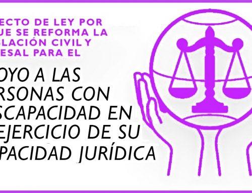 Propuestas de Enmienda a la «Reforma de la legislación civil y procesal, para el ejercicio de la capacidad jurídica de las personas con discapacidad»
